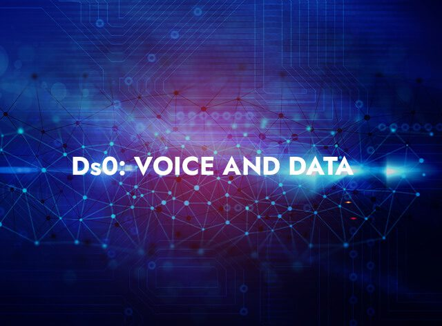 Ds0-Voice-and-Data