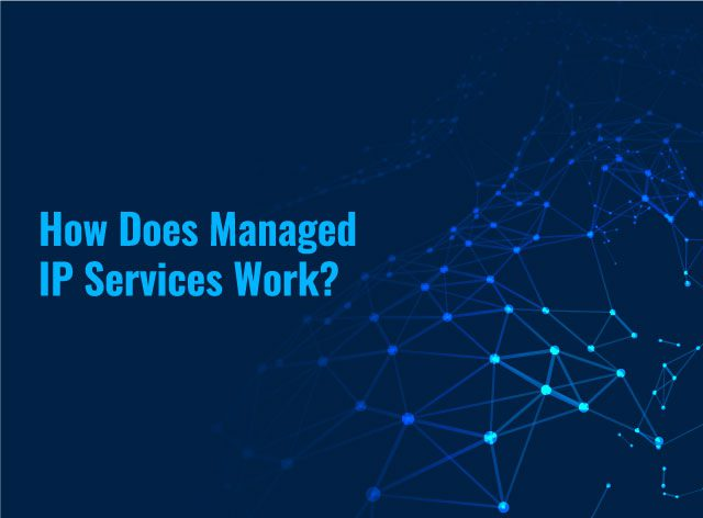 How-Does-Managed-IP-Services-Work